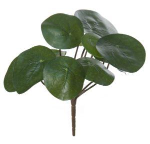 Kleine plantjes